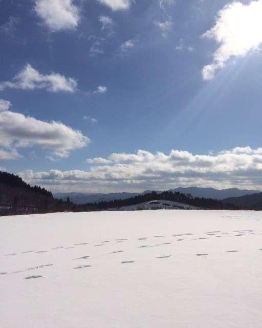 冬奥日田①.jpg